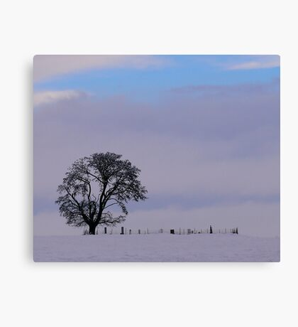 Old Historic Cemetery Canvas Print