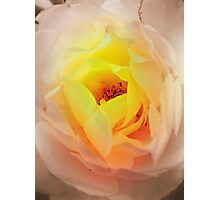 Heart on Fire Photographic Print