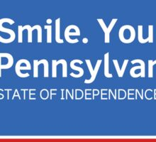 Smile. You're in Pennsylvania Road Sign Sticker