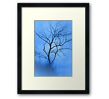 A Shade of Blue Framed Print