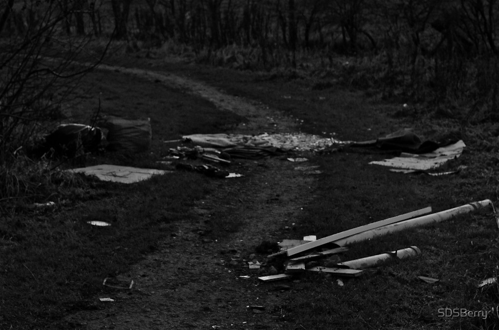 Litter on Country Path by SDSBerry