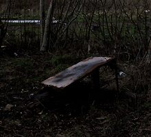 Burnt-out Fridge in Trees [2] by SDSBerry