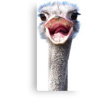Goofy ostrich Canvas Print
