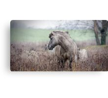 7 Great Reasons to Spend Winter Outside  Canvas Print