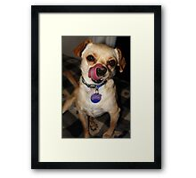 Sully! Framed Print