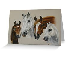 Horse head studies Greeting Card