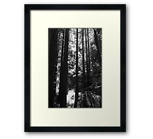 Trying To Find My Way Out Framed Print