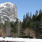 Mirror Lake, Yosemite by Trish Peach