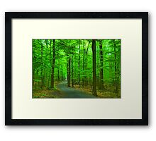 Green Trees - Impressions of Summer Forests Framed Print