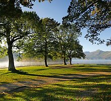 Catbells and Derwentwater in early autumn light by Martin Lawrence