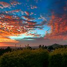 Dawn from the Porch by Kym Howard