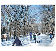 Central Park in Snow Poster