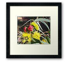 Gorgeous Gum-blossum Framed Print