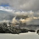 View from summit of Bretton woods ski area by Anton Oparin