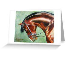 Aparee, Trakehner Stallion Greeting Card
