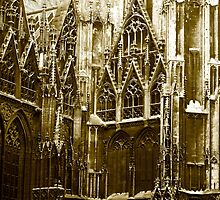 stephansdom by kchamula