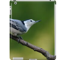 White Breasted Nuthatch iPad Case/Skin
