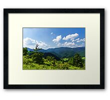Impressions of Mountains and Forests and Trees Framed Print