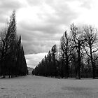 fill me with foreboding by kchamula