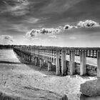 Powder Point Bridge by Jack DiMaio