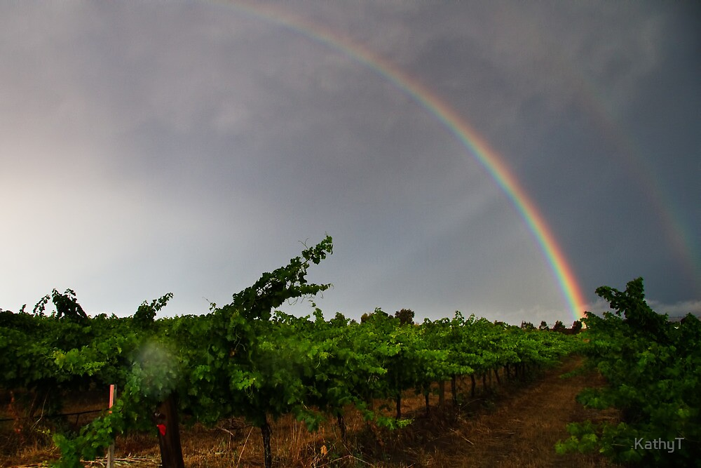 Barossa Rainbow by KathyT