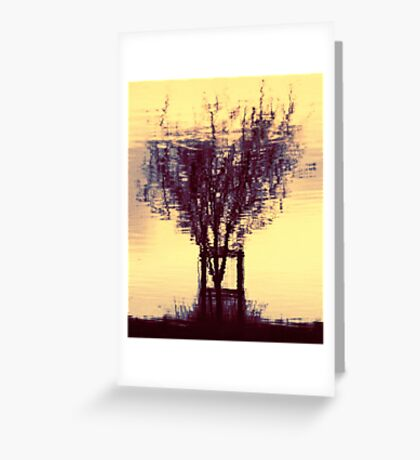 wet tree water reflections  Greeting Card
