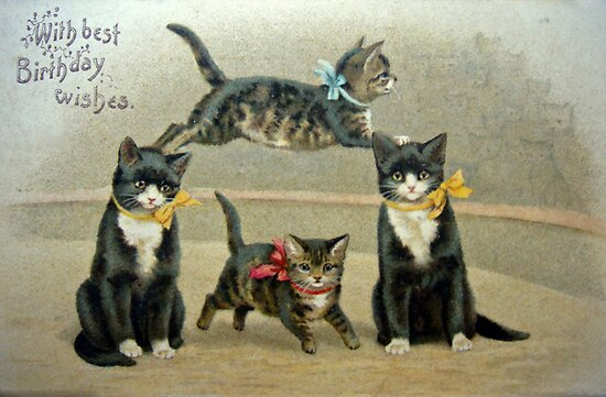 Birthday Kittens by Susan S. Kline