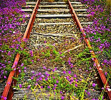 End of the Line by Tracie Louise