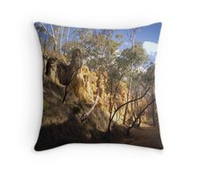 The Gully - Hill End Throw Pillow
