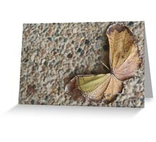 Butterfly Leaf Greeting Card