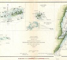 Vintage Map of The Keys of Florida (1853) by BravuraMedia