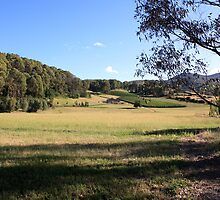 Porepunkah Victorian High Country by Emmy Silvius
