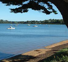 Rhyll - Phillip Island Vic by Emmy Silvius
