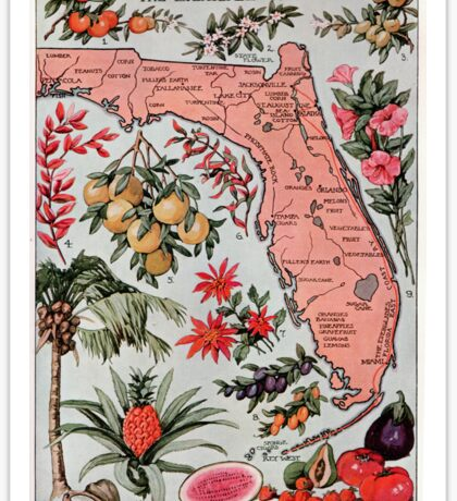 Vintage Map of Florida (1917) Sticker