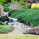 Japanese Gardens, Cowra by Cathryn O'Donnell