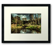 Back to the Old Woods Framed Print