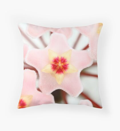 Small Pink Flowers - macro natural light Throw Pillow