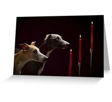 Whippet Christmas Greeting Card