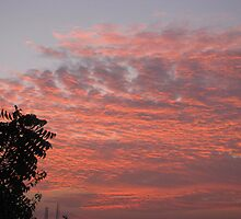 GOOD MORNING by Sehaj Kaur