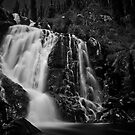 Steavenson Falls I B&amp;W by Andrejs Jaudzems