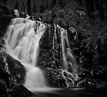 Steavenson Falls I B&W by Andrejs Jaudzems