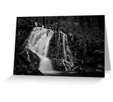 Steavenson Falls I B&W Greeting Card