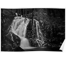 Steavenson Falls I B&W Poster