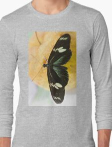 butterffly on fruit Long Sleeve T-Shirt