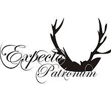 Expecto Patronum Deer Horn Photographic Print