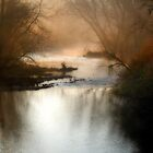 Foggy autumn morning at alum crek by woodnimages