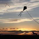 The Kite by Rookwood Studio ©