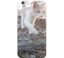 Cat on the track iPhone Case/Skin