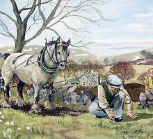 To a Mountain Daisy by Robert Burns by Joyce Grubb