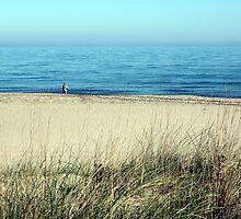 Les Basses d'en Coll (arrossars, dunes i aiguamolls de Pals) by garigots